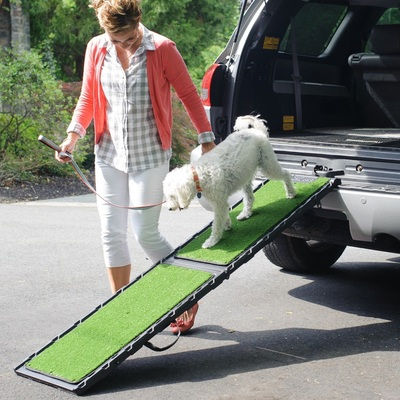 Senior Dog Ramps Senior Dog Moments